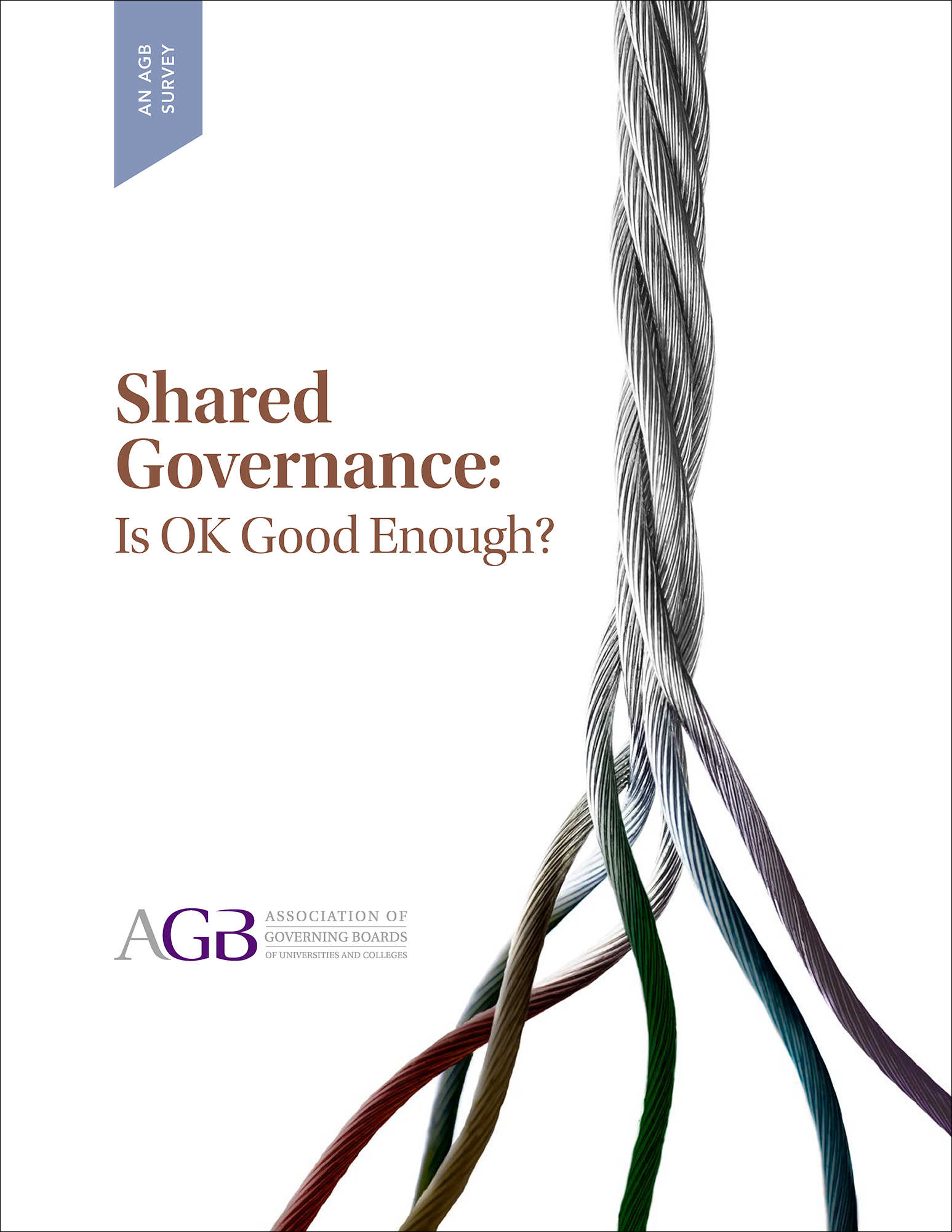 Shared Governance: Is OK Good Enough?