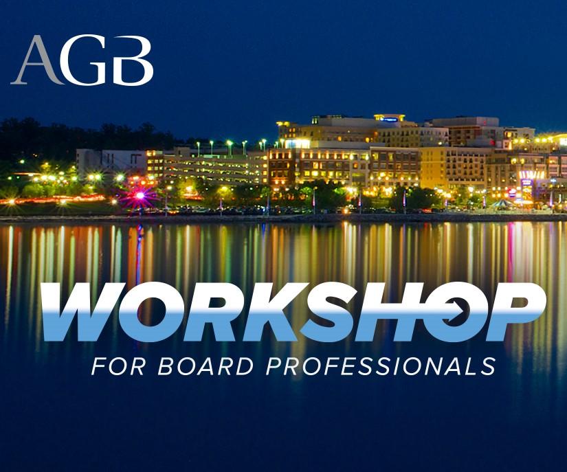 Workshop for Board Professionals